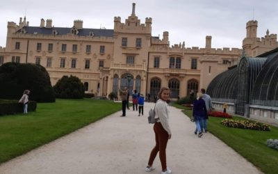 Crazy for Castles